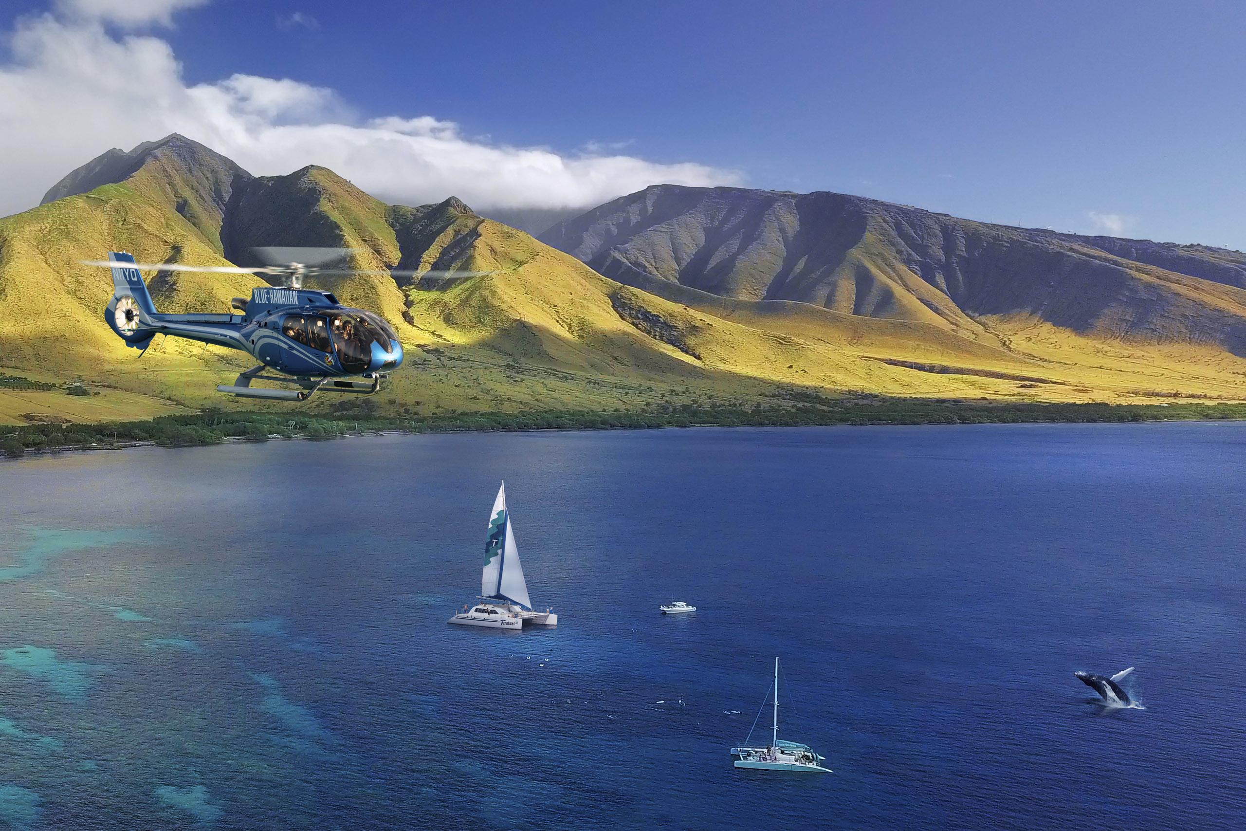 Heli-Whale Experience Maui image 1