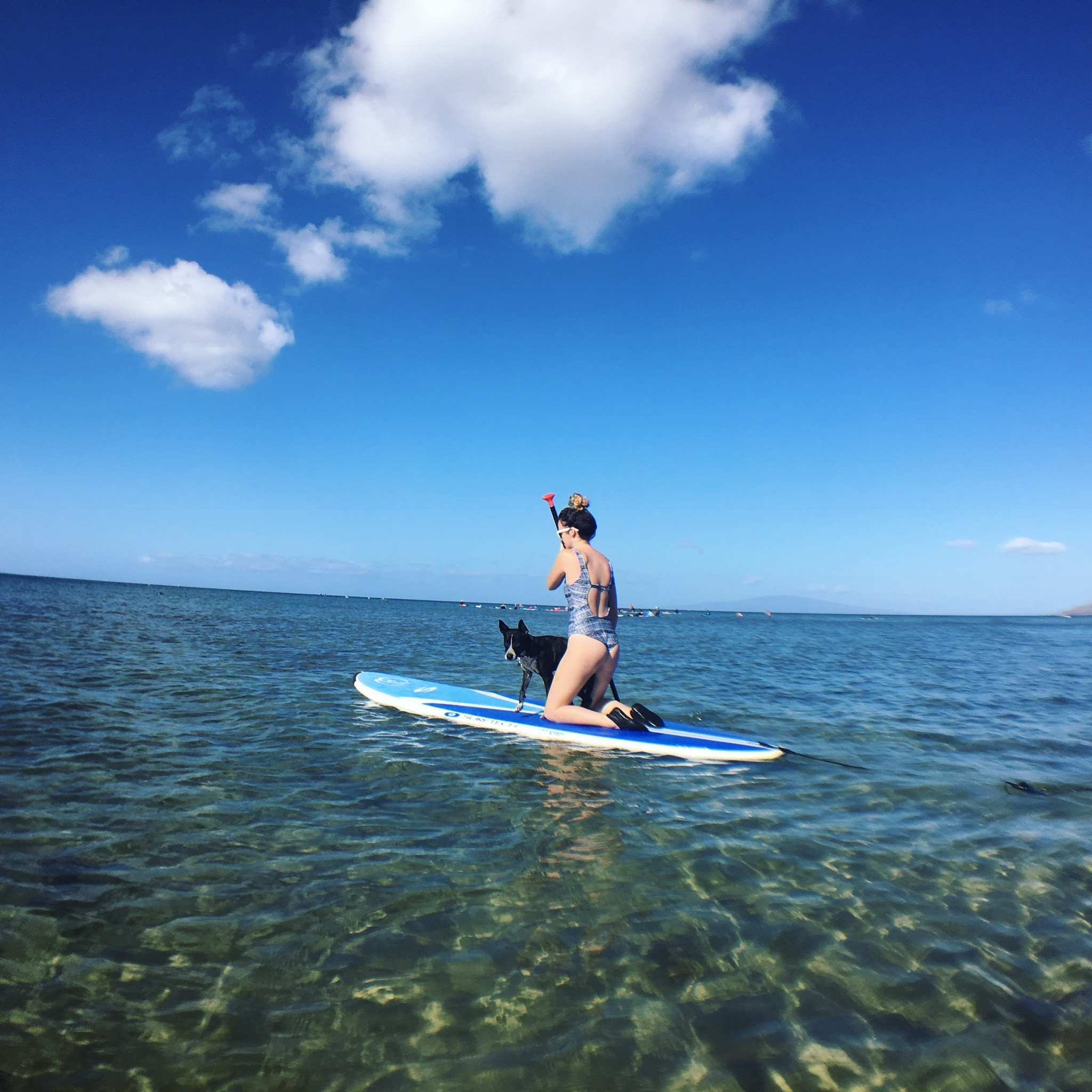 Private & Semi-Private SUP Lesson